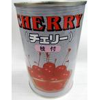 業務用 エリザ枝付チェリー 4号缶 固形 230g(中国産)